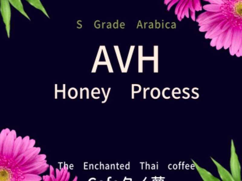 Label_AVH100100